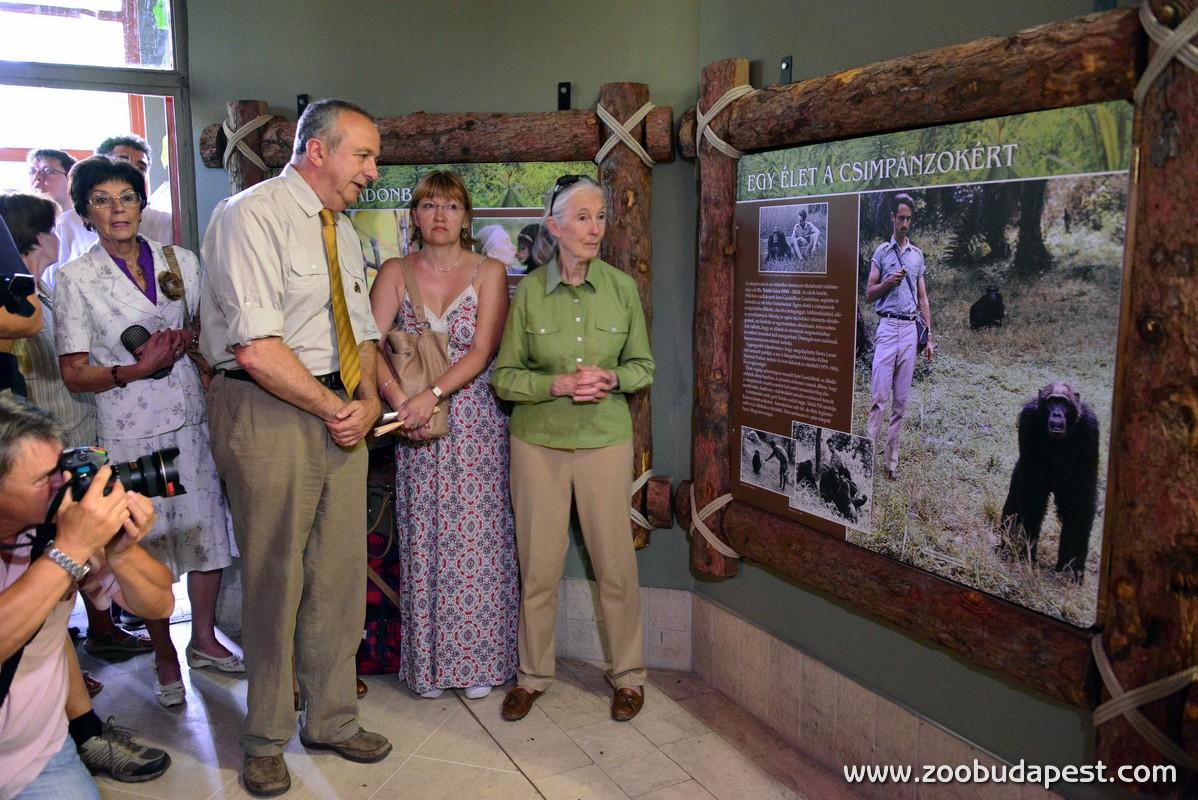 Jane Goodall a zooban20 foto Bagosi Zoltan