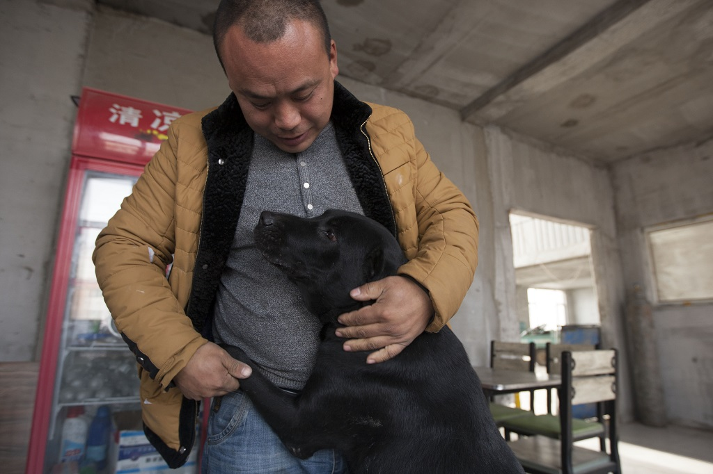 "Former Chinese millionaire man Wang Yan strokes a dog which was saved by him from the slaughterhouse at his animal rescue center in Changchun city, northeast China's Jilin province, 17 November 2015. In order to save hundreds of dogs from the slaughterhouse, a former Changchun millionaire has gone broke founding an animal rescue center that helps to find local strays a loving home. 29-year-old Wang Yan, from Gelong town in Jilin province, once had a net worth of several million yuan. But he has since given it all away, in a journey that started one day in 2012 when his beloved pet pooch went missing. ""I went looking everywhere, but all to no avail,"" he remembers. ""Finally someone let me go into the slaughterhouse to try my luck there."" According to Sina News, Wang hung around the slaughterhouse for a week, but was unable to find his lost dog. Instead, he found scenes of bloody slaughter that he was unable to shake from his mind. After that experience, Wang used his fortune to buy the slaughterhouse and establish an animal shelter inside an abandoned steel factory. Over time, he gradually built up the shelter, finding more and more homes for strays. ""Right now, we only have 215 dogs,"" he said. ""The most we've had at one time is 1,000, many of them have been adopted."""