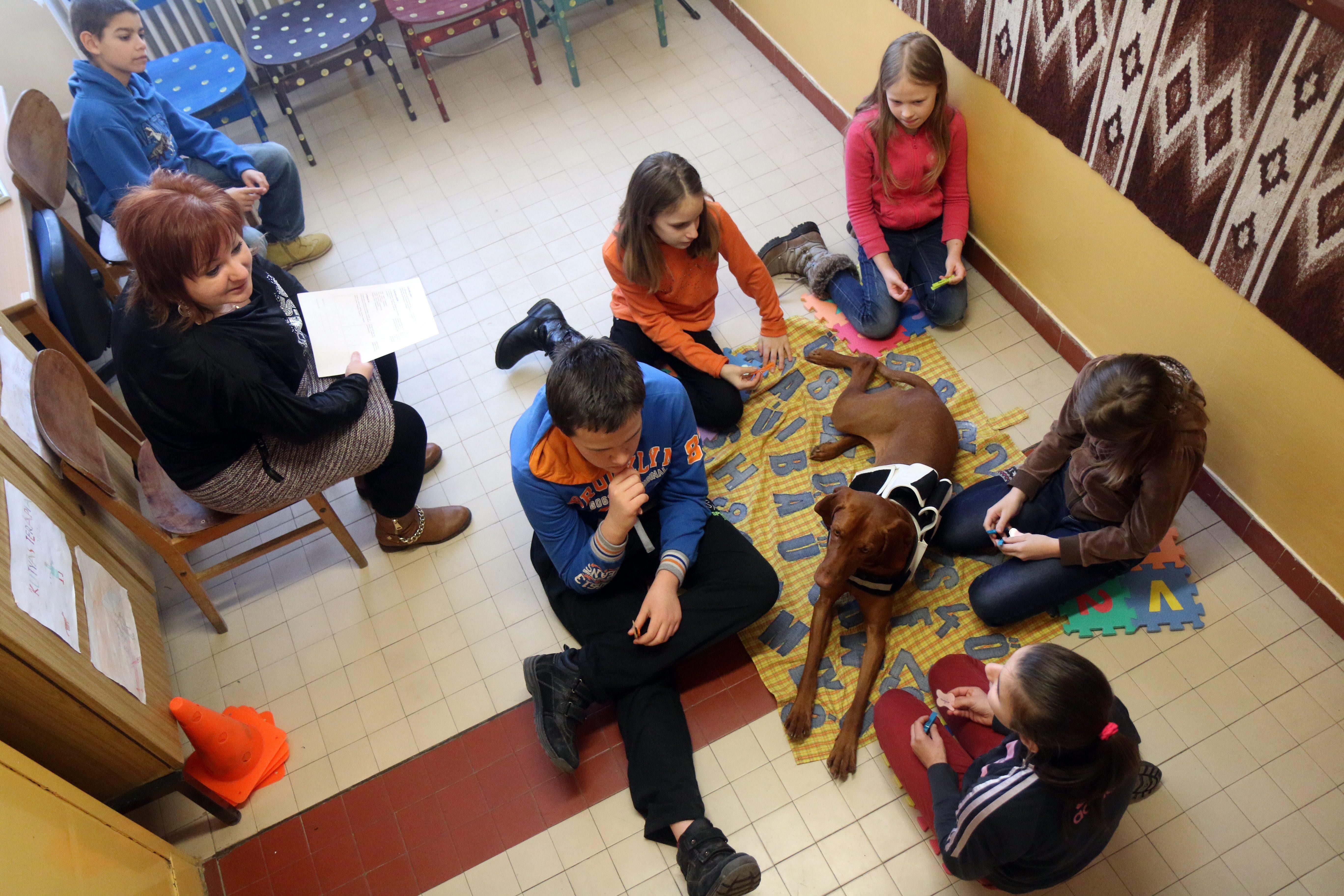 Ózd, 2016. január 22. Sebõk Éva tanító és fejlesztõpedagógus és Repce, a drótszõrû magyar vizsla fejlesztõ foglalkozáson vesz részt diákokkal az ózdi Bolyky Tamás Általános Iskolában 2016. január 22-én. A tanárnõ kezdeményezésére az iskolában terápiás kutyával asszisztált pedagógiai foglalkozásokat tartanak a tanulási zavarral küzdõ diákok és társaik számára. A kötetlenebb, játékosabb jellegû foglalkozás során a kutyával közösen végzett feladatmegoldás és az állatra fordított figyelem elsõsorban a szorongás leküzdésében és a koncentrációképesség javításában segít a diákoknak. MTI Fotó: Vajda János