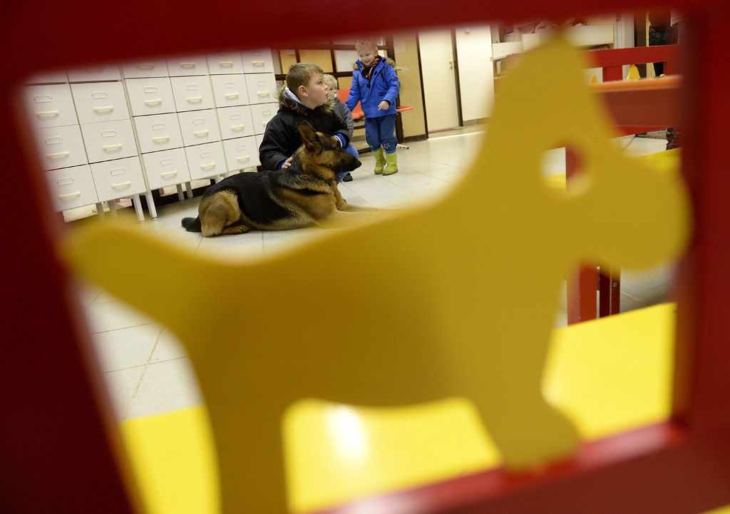 Budapest, 2016. február 10. Gyerekek játszanak Rexszel, Varga Károly gyermekorvos kutyájával, az óbudai Ányos utcai gyermekorvosi rendelőben 2016. február 10-én. A terápiás minősítéssel rendelkező német juhász minden rendelésre elkíséri gazdáját, ahol neki is szerepe van, megnyugtatja a gyerekeket, leköti a figyelmüket. MTI Fotó: Kovács Tamás